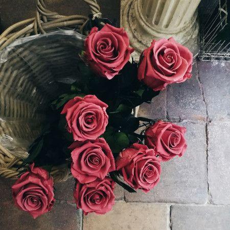 comprar rosas preservadas en Madrid centro