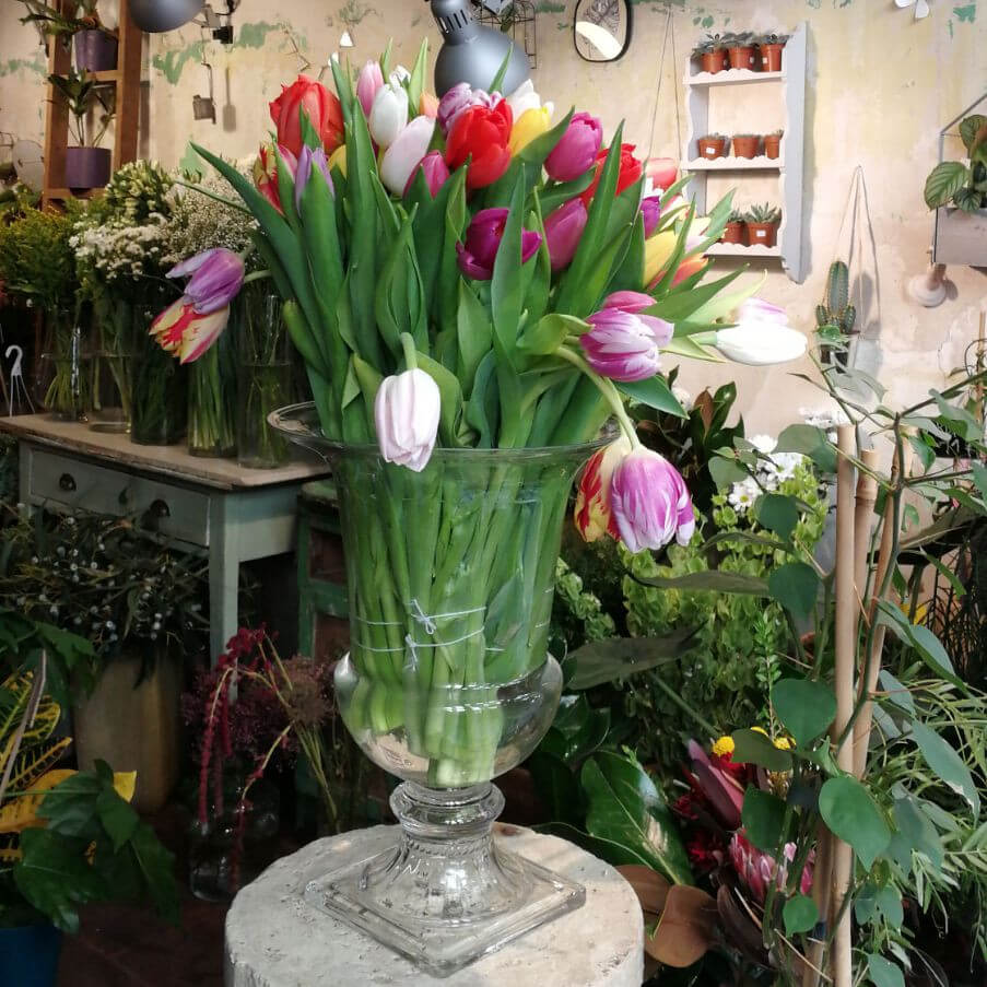 Comprar online Madrid capital ramos de flores de tulipanes de colores