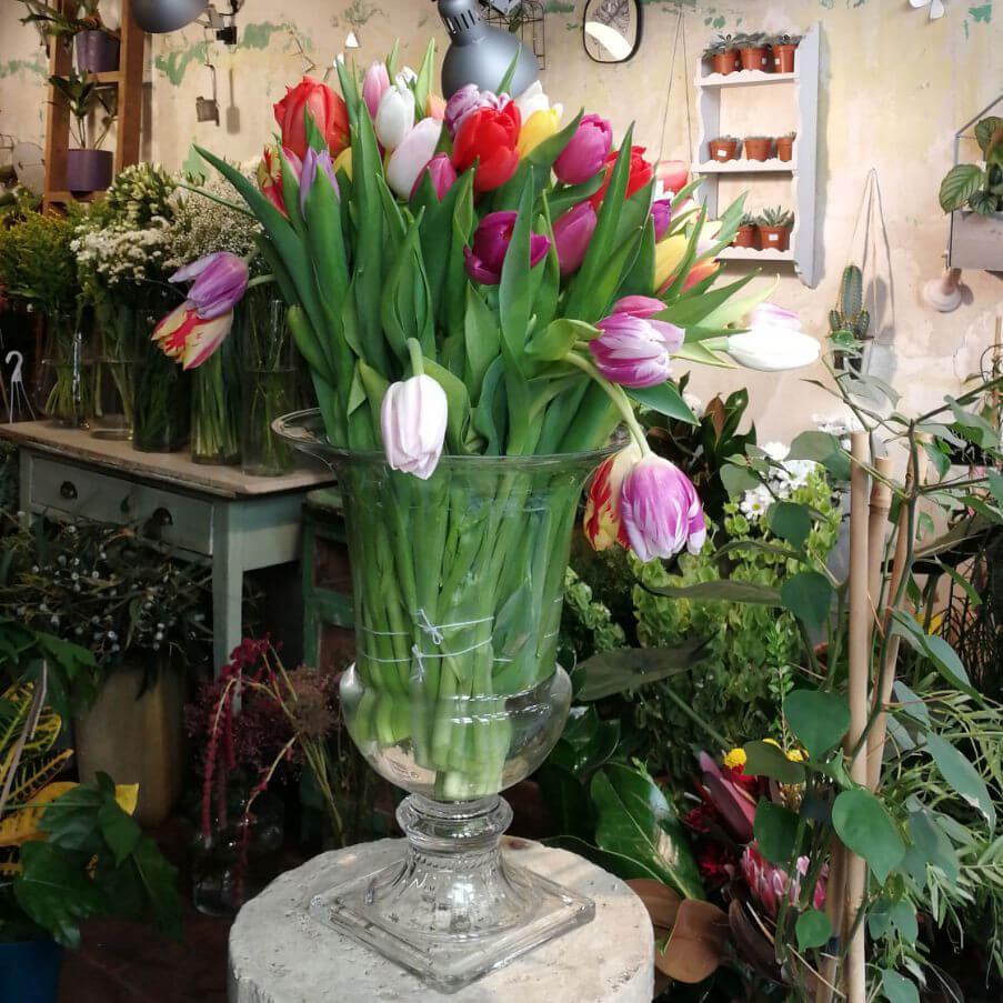 Comprar online Madrid capital ramos de flores de tulipanes de colores