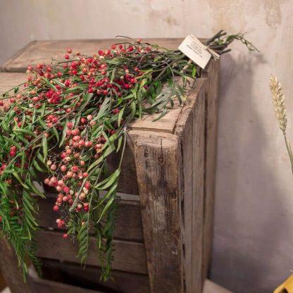La falsa pimienta preservada es duradera en el tiempo