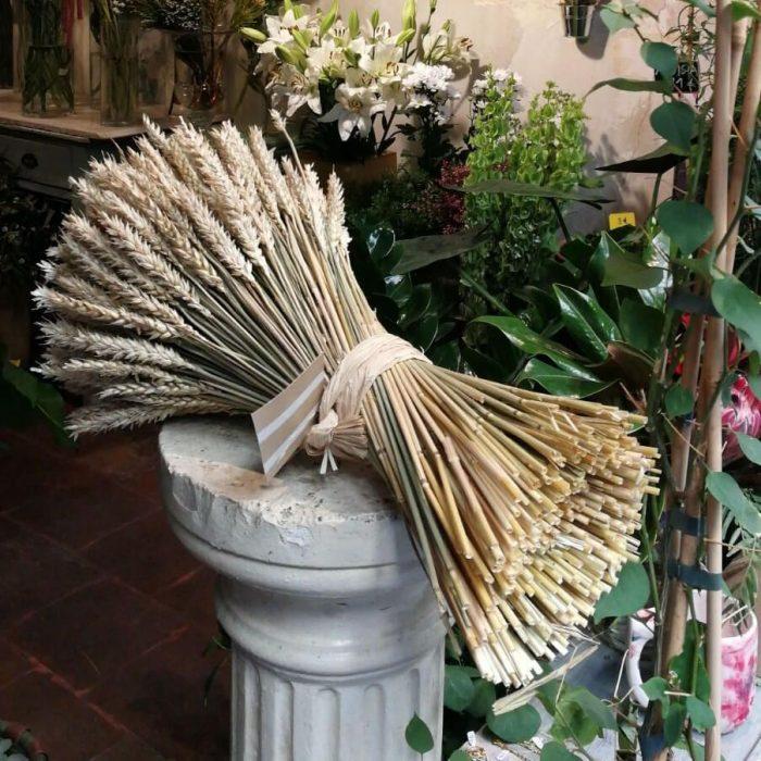 Ramilletes de trigos preservados