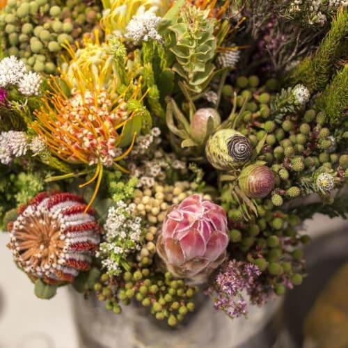 Comprar ramo de verdes africanos en madrid centro