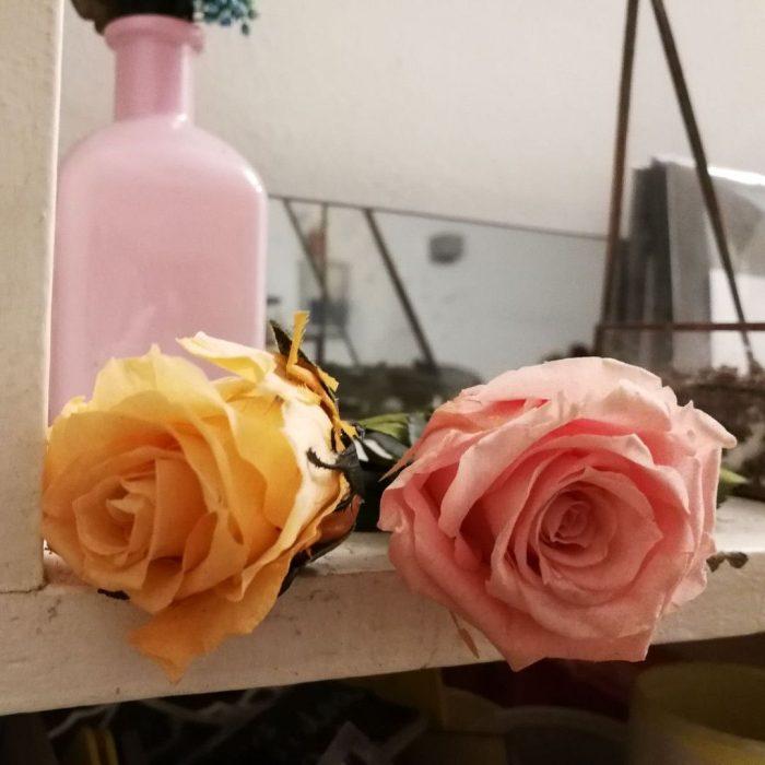 rosas preservadas y eternas, duraderas para toda la vida venta en Madrid centro