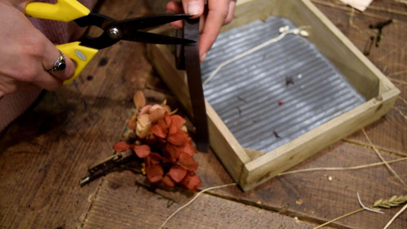 Utilizar cinta PVC de jardinería para enrollar el tallo