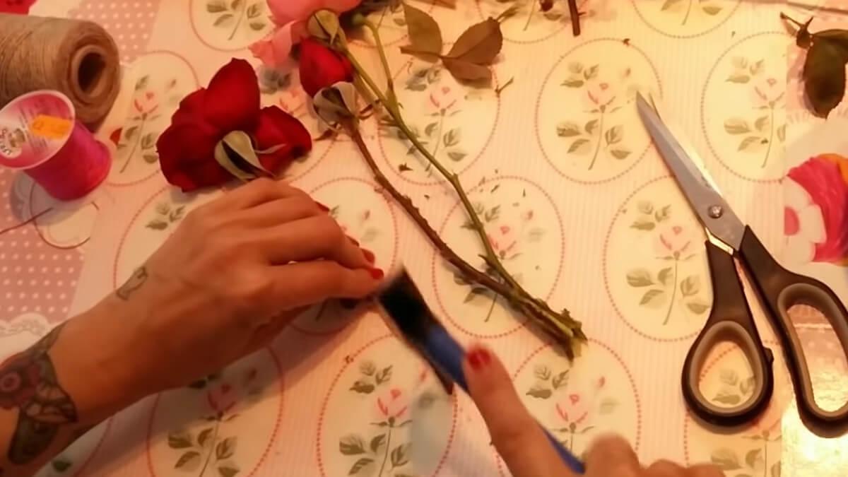 machacar los tallos con un martillo para garantizar la absorción de glicerol