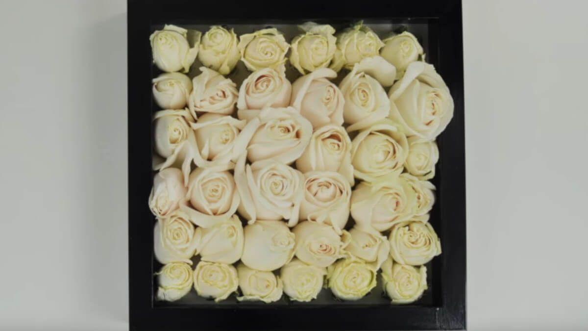 Secado de flores en el horno