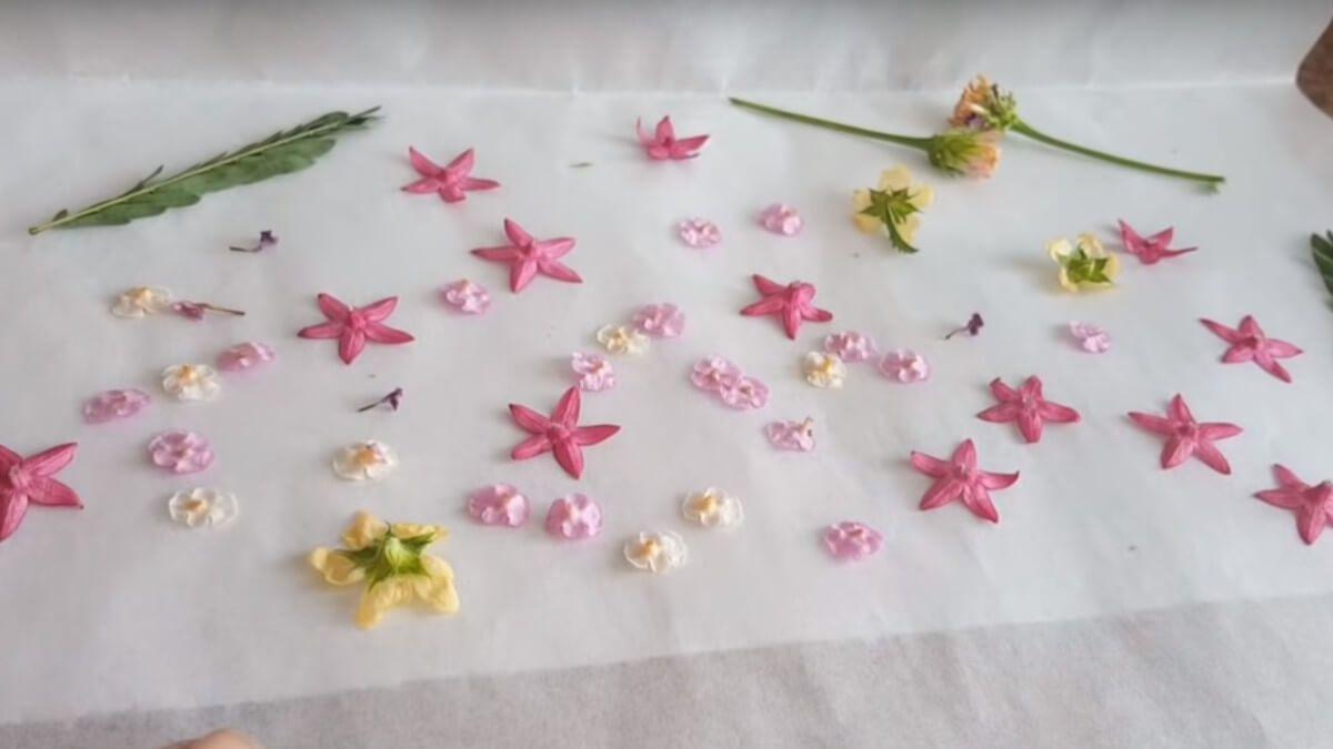 Secado de flores en el microondas