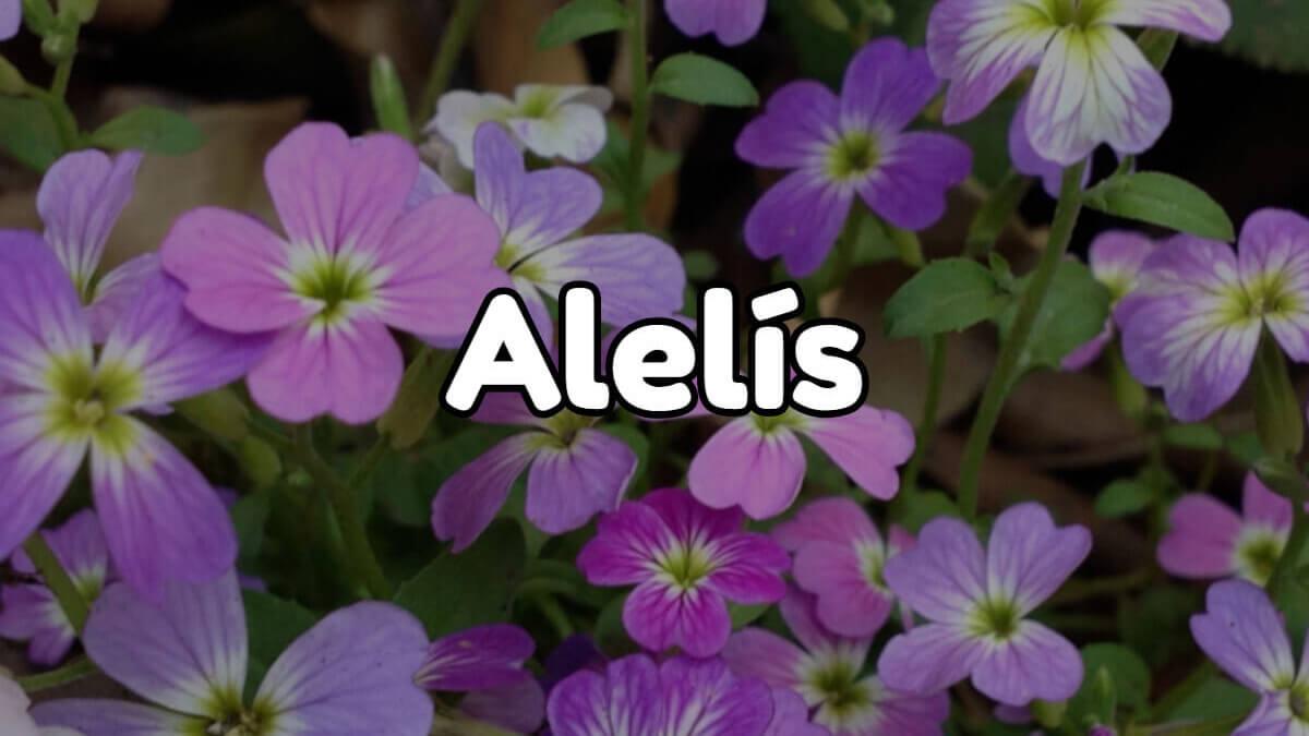 alelís