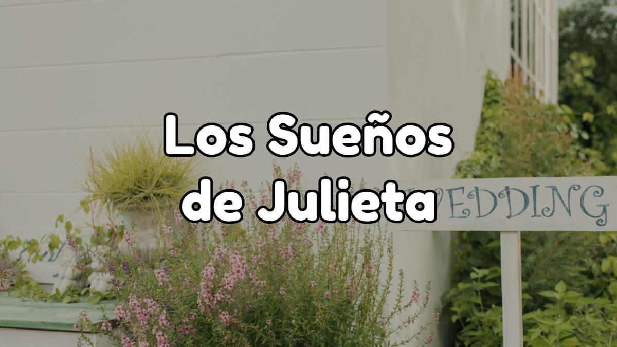 Los sueños de julieta