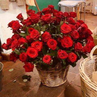 Cesta de 100 rosas rojas