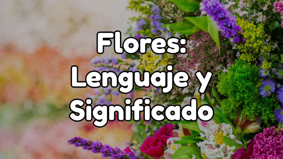 Lenguaje de las flores y significado