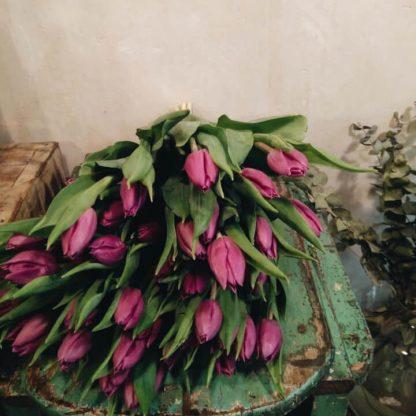 Ramo con tulipan rosa