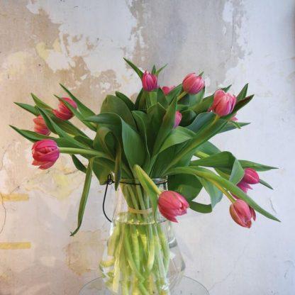 Ramos de tulipanes rosas